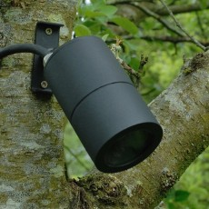 Screw-Mount Tree Spotlight MR16 - Black