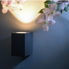 Elipta Larson Wall Light - Graphite