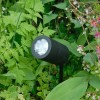 Elipta Compact Spike Spotlight - Black - 12v MR16