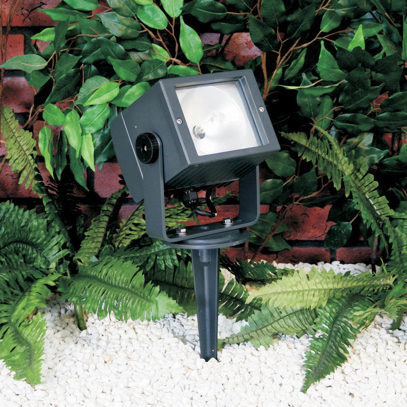 Apollo35 metal halide floodlights are a compact design for low-energy lighting of smaller trees and facades