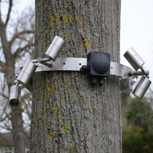 Stainless Steel Strong Tree bracket