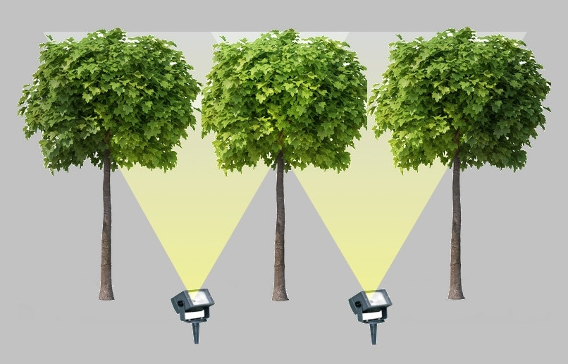Outdoor lights: A guide to lighting Pleached trees